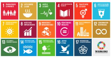 17 Objectifs de Développement Durable vus par les 6eA et B